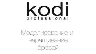 Моделирование и наращивание бровей Kodi Professional