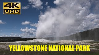 Yellowstone National Park during  Pandemic, June 2020, 4k