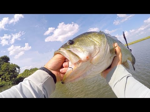 How you Know it's a BIG BASS!!