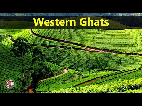 Best Tourist Attractions Places To Travel In India | Western Ghats Destination Spot