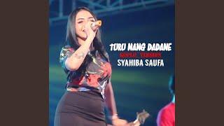 Gambar cover Turu Nang Dadane (Live)