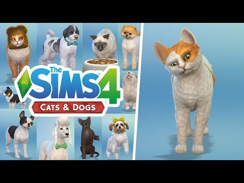 FIRST LOOK AT THE SIMS 4: CATS AND DOGS (Create A Pet)