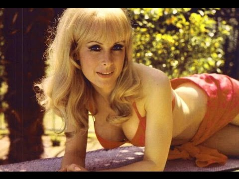 Who is Barbara Eden?