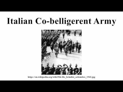 Italian Co-belligerent Army