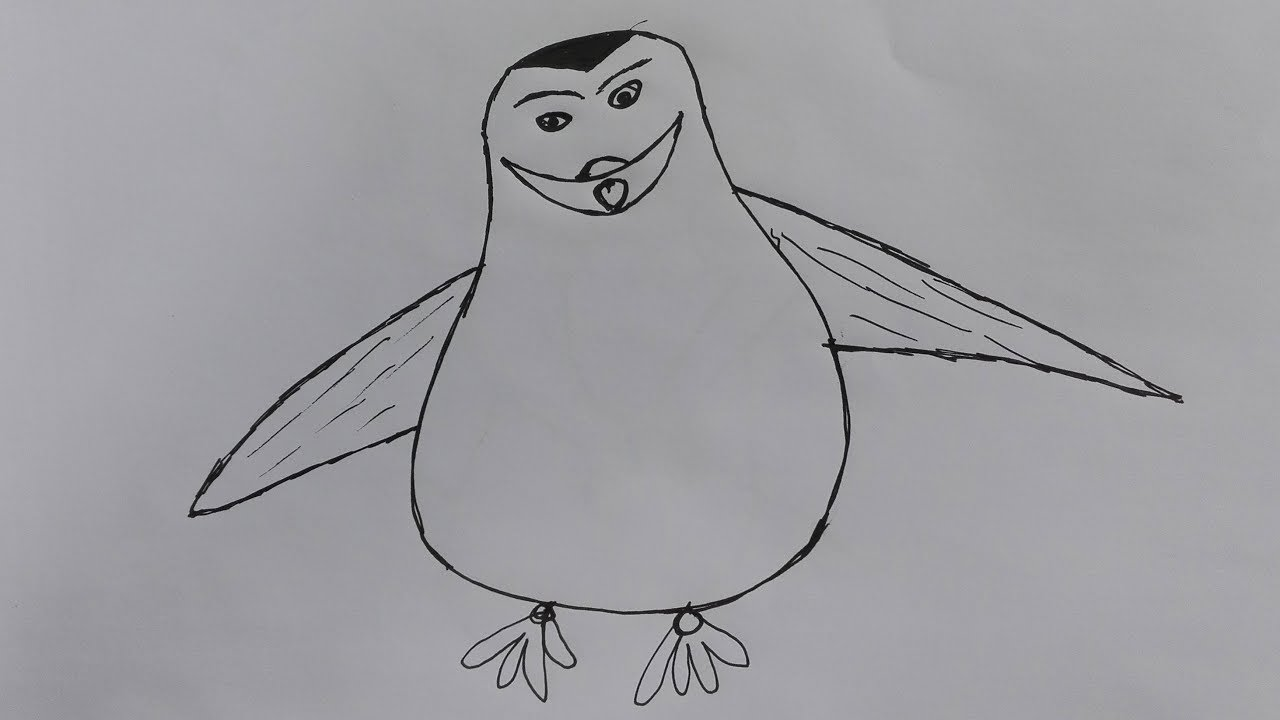 Line Drawing Penguin : How to draw a penguin realistic step