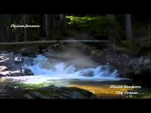 David Sanborn - The Dream . . .
