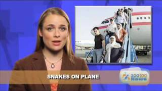 Funny Pet News #1- Feces House, Champion Poodle, Snake Plane