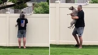 Pup gets lifted over fence so she can bark at passing cars
