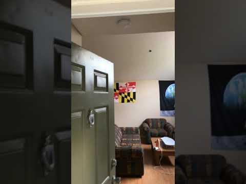 Disney College Program Apartment Tour Vista Way 2018