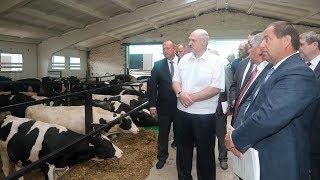 Лукашенко совершил рабочую поездку в Могилевскую область