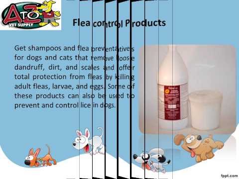 Procure Wholesale Pet Supplies Online At Affordable Costs
