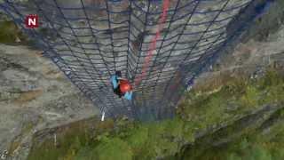 Aylar klatrer henger nettet