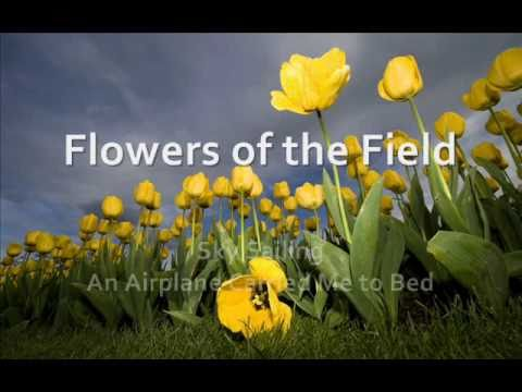 Flowers Of The Field By Sky Sailing With Lyrics