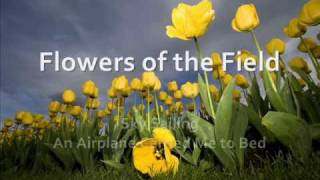 Flowers of the Field by Sky Sailing *with lyrics*