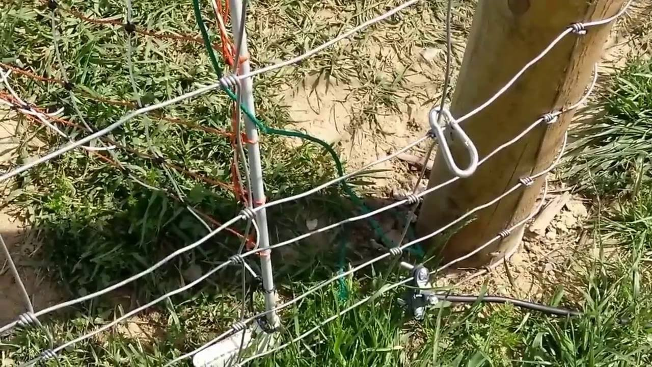 Fix Electric Fence Wire Center Wiring An Ground Problem For Good Youtube Rh Com Repair