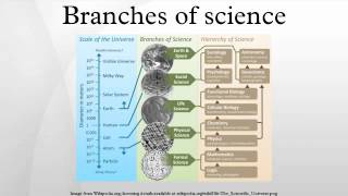 Video Branches of science download MP3, 3GP, MP4, WEBM, AVI, FLV Agustus 2018