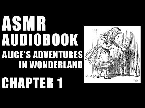 """Adventures in Wonderland"" audiobook by Lewis Carroll male ASMR reading"