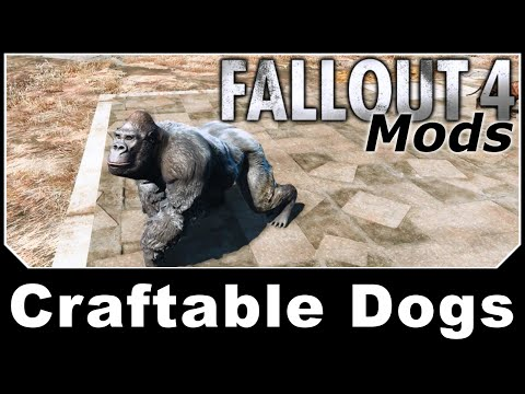 FALLOUT 4 MODS - Week 11 - Hey, Teacher what are we learning