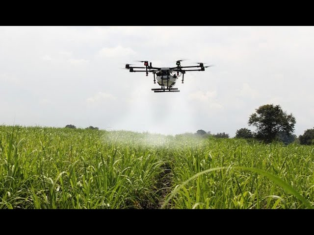 Embarque de agricultura de precisão, como drones, faz a diferença para associados da AFCOP