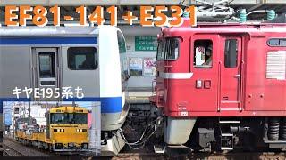 9/17 EF81-141+E531系K453編成 AT入場配給(キヤE195系試運転あり)@勝田駅