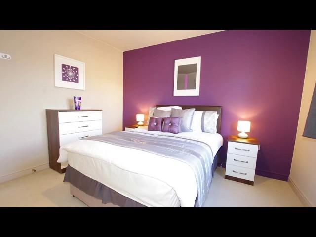 🌟Beautiful En-suite 🚿 Bills Included ⚡ Main Photo