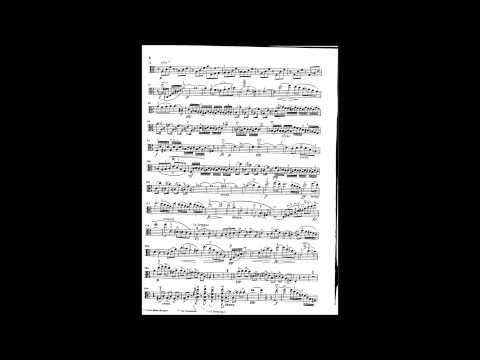 Schubert sonata Arpeggione fur Klavier and viola. Sonata for Piano and Viola in a minor