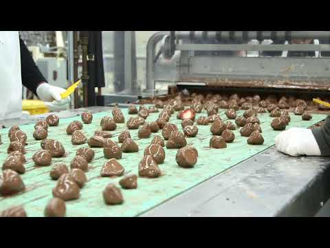 Malley's Chocolates cranks out chocolate-covered strawberries in time for Valentine's Day