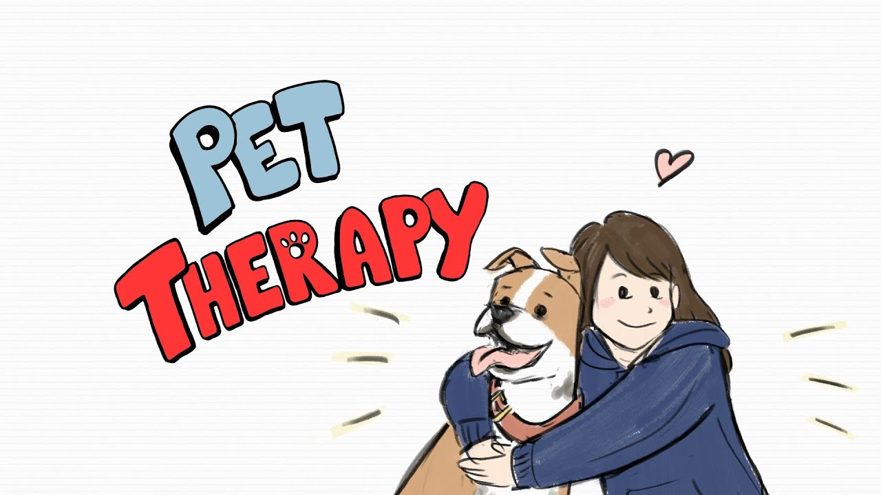 How To Get A Pet Therapy Dog