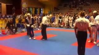 2011 WAKO Europeans Team Finals Part 2