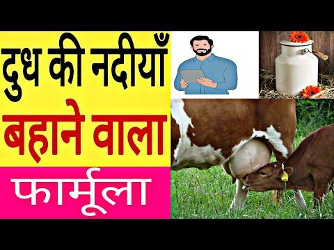 दूध बढ़ाने का रामबाण देसी फार्मूला, ayurvedic desi formula for increasing milk thumbnail