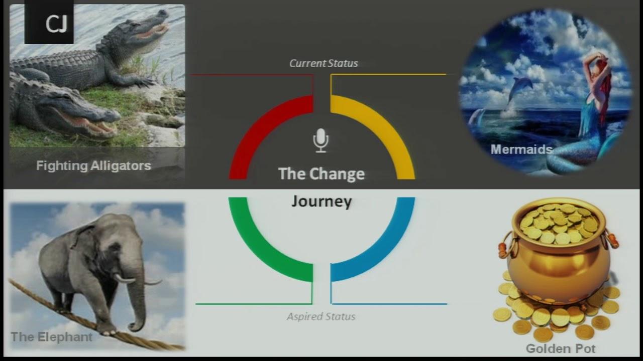 Amr Fawzi the role of storytelling in organizational change - amcham egypt
