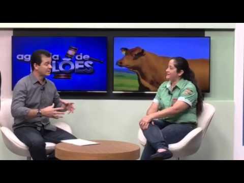 Entrevista Semana Sou SENEPOL - Canal Do Boi