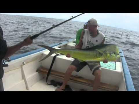 Popper Fishing Ecuador Marlin Dorado Cubera Amber