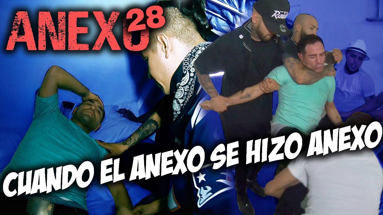 Anexo 28 | Christian Meza