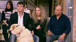 """""""Пусть говорят"""" о трагедии с Лерой Волковой."""