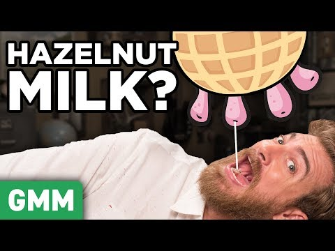 Blind Nut Milk Taste Test