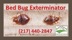 Bed Bug Exterminator-Palmyra Missouri
