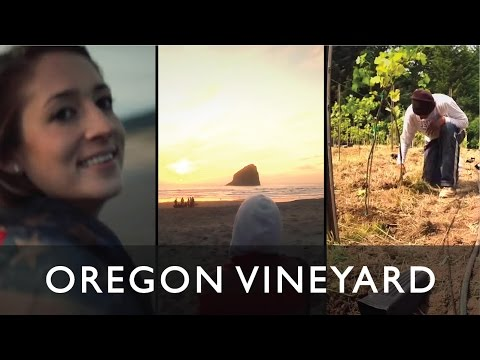 OREGON TRIP 2015 - DIY VINEYARD - COAST - SNOWBOARDING - WINERIES - CANADA