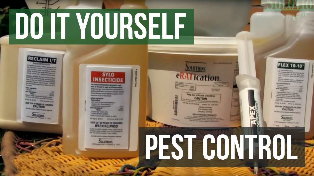 Solutions do it yourself pest control youtube solutions do it yourself pest control solutioingenieria Image collections