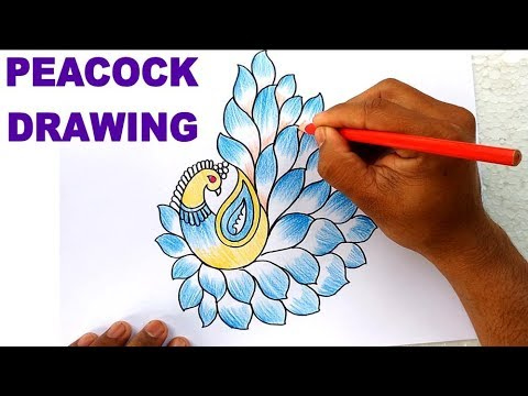 How to Draw Peacock with Beautiful Feather Design | Colour Pencil Art
