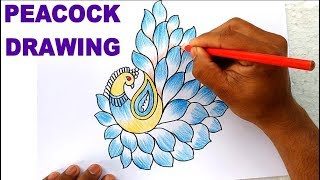 How to Draw Peacock with Beautiful Feather Design   Colour Pencil Art