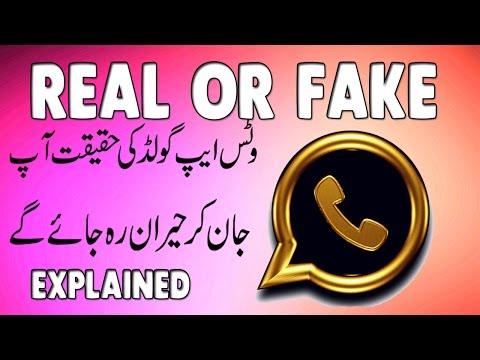 WhatsApp Gold Real Or Fake - Explained In Urdu / Hindi