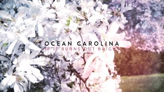 Watch Ocean Carolina If It Burns Out Bright video