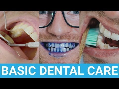 Taking care of your teeth All the things you need to know
