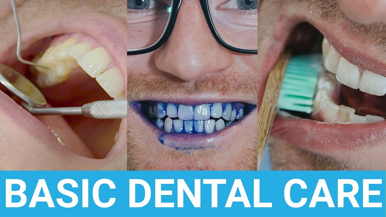 Taking Care Of Your Teeth All The Things You Need To Know Youtube