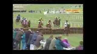 1995 Daily Express Triumph Hurdle