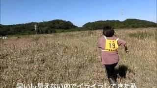 英系千葉支部の猟野競技会の動画です。