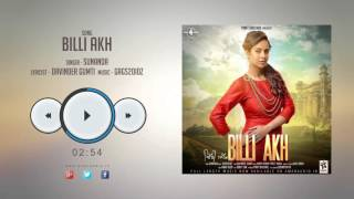 New Punjabi Songs 2016 || BILLI AKH || SUNANDA || Latest Punjabi Songs 2016