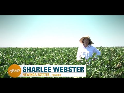 myBMP: Australian Cotton Grower Case Studies
