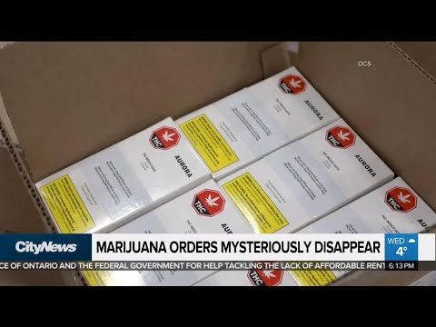 Pot orders from OCS mysteriously disappear